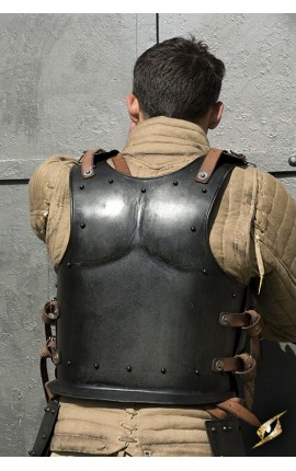 Back Plate Dark Warrior - Dark Drake - L 200612L Iron Fortress